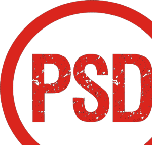 PSD_Party